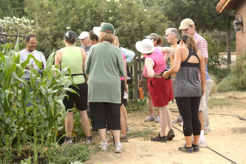 organic breakfast, organic, organic food, organic farm, rancho la puerta, health spa, health retreat