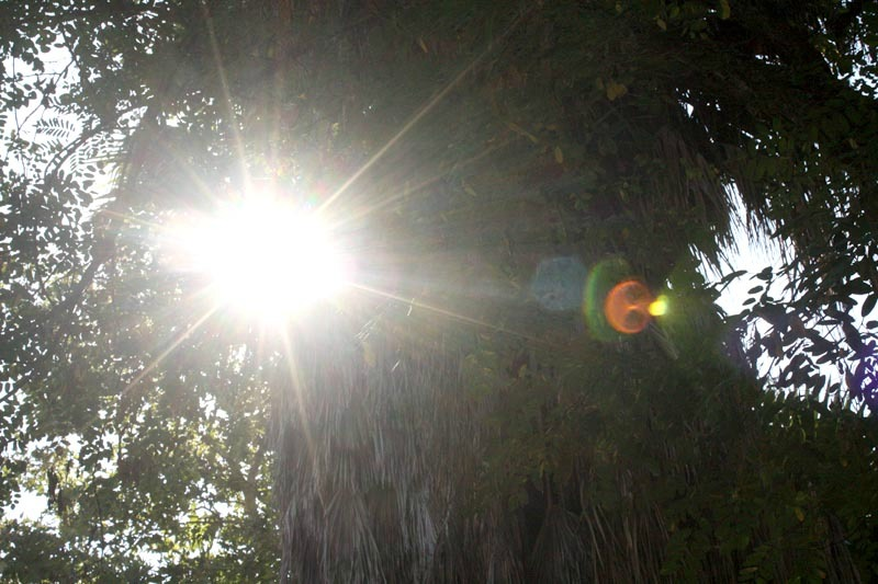 nature walk, tecate, mexico, health retreat, health spa