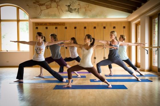 yoga, ashtanga yoga, vinyasa, health retreat, health spa