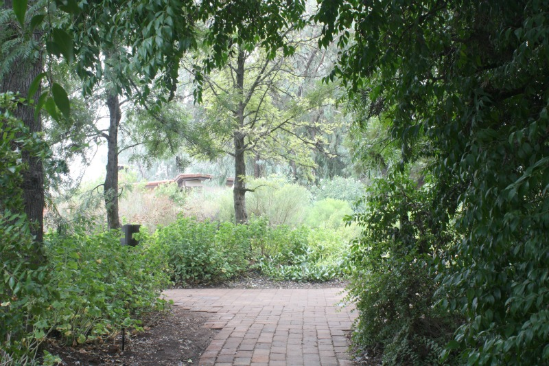 misty day, destination spa, health retreat, health spa, mexico, rancho la puerta