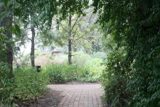 misty day, destination spa, health retreat, health spa, mexico, rancho la puerta