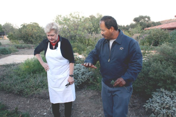 cooking class, organic garden, patricia wells, cooking school, health retreat, health spa, destination spa